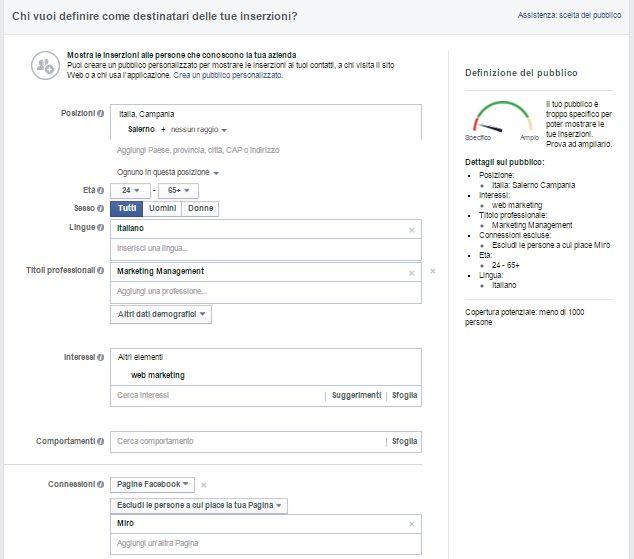 opzioni di targetizzazione del pubblico su Facebook Ads